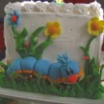 Amazing caterpillar party photos