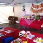 Girl birthday party farm idea